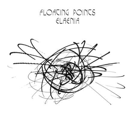 floating point elaenia