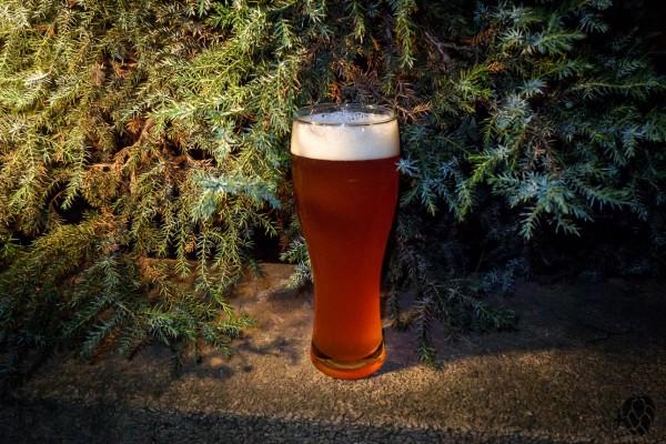 Piwo zsokiem Pracownia Piwa