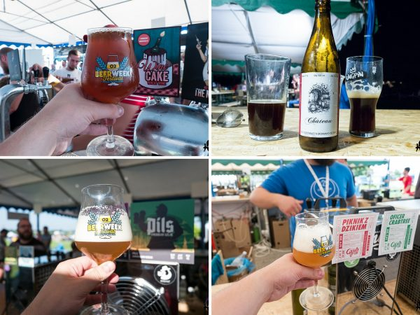Craft Beer Camp 2016 piwa